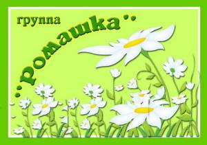 11romashka