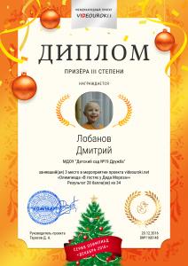 3 степени Лобанов Дмитрий