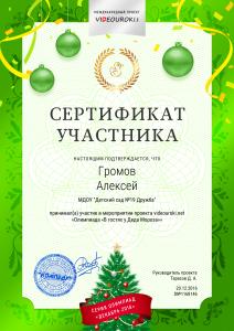 31412364 - 1168146. Сертификат Громов Алексей